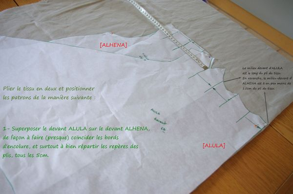1-Superposition d'ALULA sur ALHENA