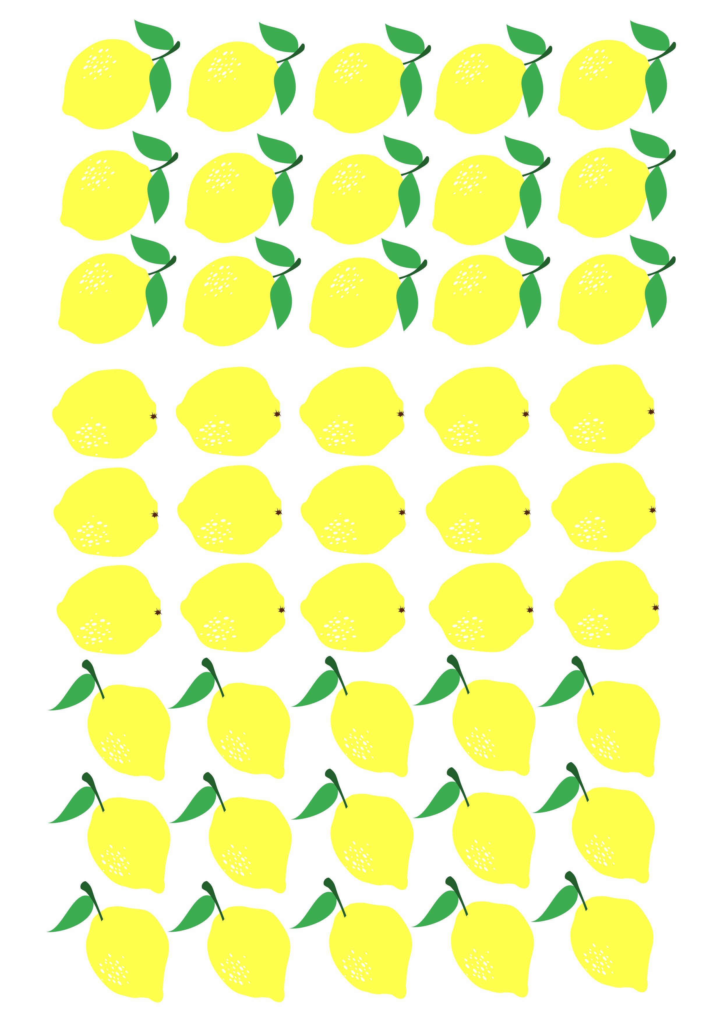Planche CitronsEntiers A4_3_bis